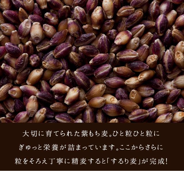 大切に育てられた紫もち麦。ひと粒ひと粒にぎゅっと栄養が詰まっています。ここからさらに粒をそろえ丁寧に精麦すると「するり麦」が完成!