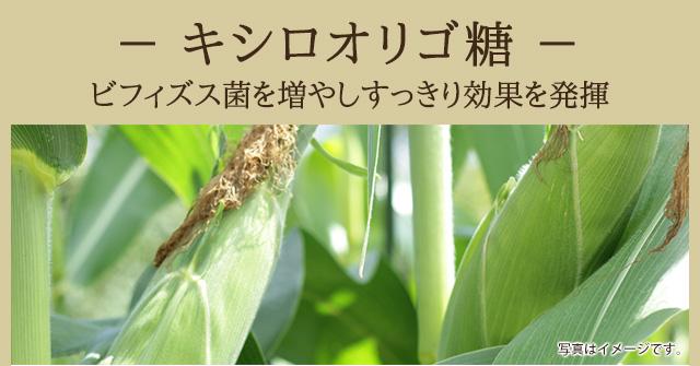 [キシロオリゴ糖 ]ビフィズス菌を増やしすっきり効果を発揮