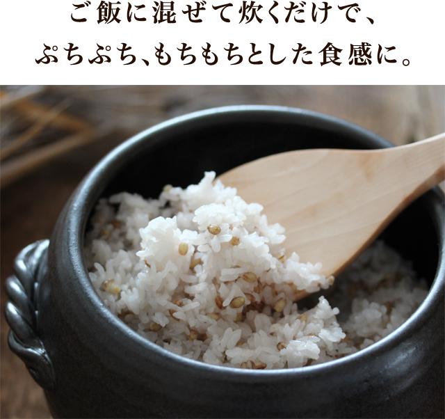 ご飯に混ぜて炊くだけ、ぷちぷち、もちもちとした食感に